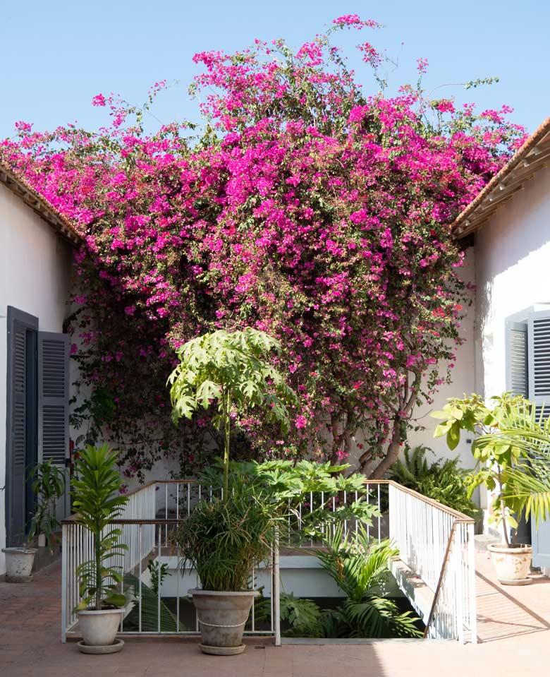 jardin-exterior-area-relax-siki-hotel